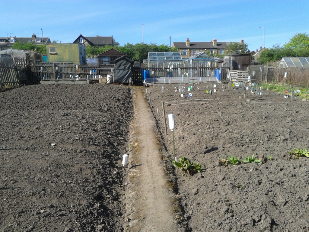 Plot in Early April