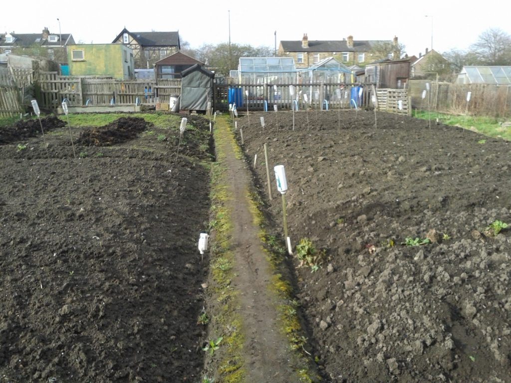 Allotment March 2020